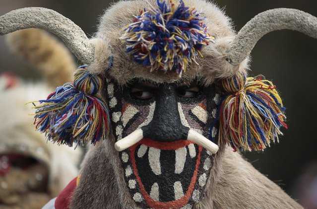 "A masked Bulgarian dancer takes part in the second competition day of the 24th International Festival of Masquerade Games ""Surva"" in the town of Pernik, Bulgaria Saturday, January 31, 2015. (Photo by Valentina Petrova/AP Photo)"