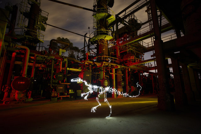 Dinosaur Light Paintings By Darren Pearson