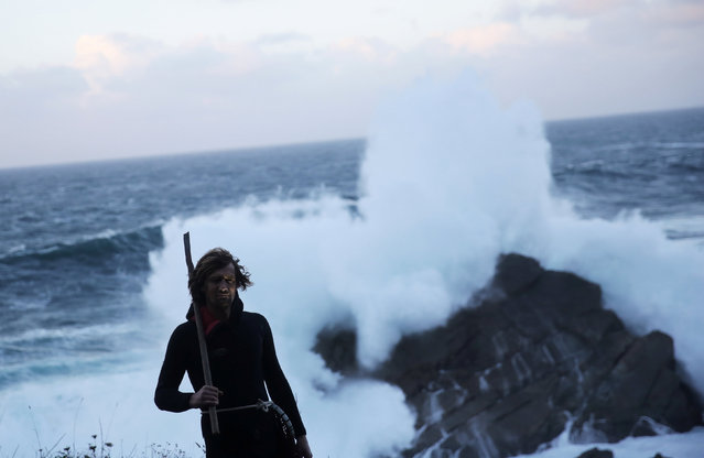 """Santi Diaz Mosquera, 41, a """"percebeiro"""" (barnacle fisherman), poses for a portrait in front of the rock known as Los Caballos (horses), where his father died 20 years ago, at the coast of Ferrol, in the northwestern Spanish region of Galicia, December 16, 2016. Spanish fisherman Santi Diaz Mosquera knows every journey down the treacherous Galician rocks in search of a handful of prized gooseneck barnacles could be his last. The dangerous practice of darting in between the huge waves that hammer against the Ferrol coastline in northwest Spain to cut the rare delicacy from the rocks claimed the life of his father nearly 15 years ago. But for Mosquera, the rewards from a successful mission are too great to ignore. He can sell 1 kg (2 lb) of the crustaceans for around 70 euros ($73). That rises to 250 euros ($260) at auction in the week before Christmas, a big sum in a region struggling since the collapse of its shipbuilding industry. On a good day Mosquera can catch 10 kg of gooseneck barnacles, also known as percebes. (Photo by Nacho Doce/Reuters)"""