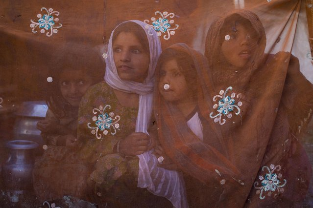 Bakarwal nomad children are seen through a veil that covers their tent as they react to a Kashmiri man photographing them on the outskirts of Srinagar, Indian controlled Kashmir, Tuesday, April 21, 2015. (Photo by Dar Yasin/AP Photo)