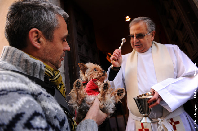 Father Juan Manuel Villar blesses a dog during the feast of San Anton, the patron saint of animals, at the San Anton church