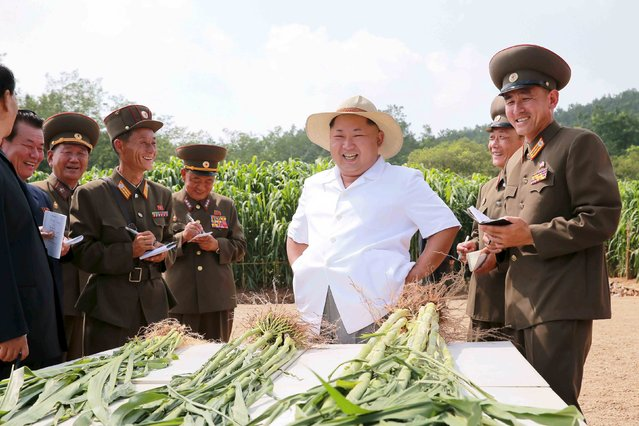 North Korean leader Kim Jong Un gives field guidance to Farm No. 1116 under the Korean People's Army (KPA) Unit 810 in this undated photo released by North Korea's Korean Central News Agency (KCNA) in Pyongyang August 13, 2015. (Photo by Reuters/KCNA)