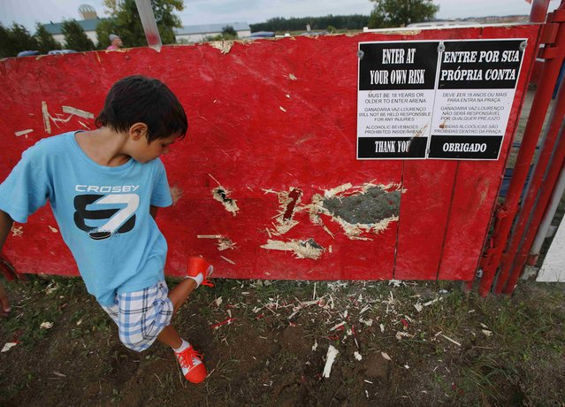 """A boy compares the size of his shoe with holes punched through a wooden fence by the horns of a bull, after an Azorean """"tourada a corda"""" (bullfight by rope) in Brampton, Ontario August 15, 2015. (Photo by Chris Helgren/Reuters)"""
