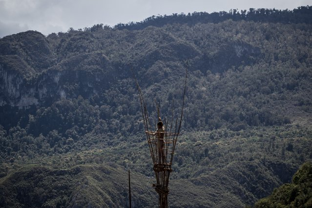 A Papuanese tribal boy stands on the top of a tower during the 25th Baliem Valley festival on August 7, 2014 in Wamena, Indonesia. The Baliem Valley Cultural Festival has been organized annually in the Baliem Valley, home to three Papua interior tribes: the Dani, Lani and Yali tribes. (Photo by Agung Parameswara/Getty Images)