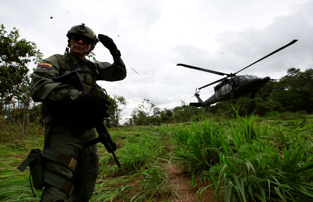 A Colombian anti-narcotics policeman taks position as he waits to board a helicopter in a rural area of Calamar in Guaviare state, Colombia, August 2, 2016. (Photo by John Vizcaino/Reuters)