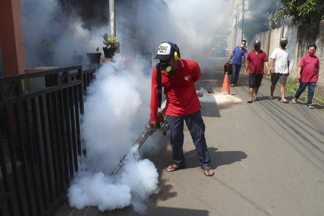 A worker fumigates a neighborhood in an effort to control the spread of dengue fever, amid the new coronavirus outbreak in Jakarta, Indonesia, Sunday, May 17, 2020. (Photo by Achmad Ibrahim/AP Photo)