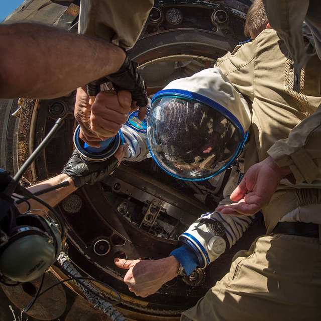 Tim Kopra of NASA is helped out of the Soyuz TMA-19M spacecraft just minutes after he and Yuri Malenchenko of Roscosmos and Tim Peake of the European Space Agency landed in a remote area near the town of Zhezkazgan, Kazakhstan on Saturday, June 18, 2016.  Kopra, Peake, and Malenchenko are returning after six months in space where they served as members of the Expedition 46 and 47 crews onboard the International Space Station. (Photo by Bill Ingalls/NASA)