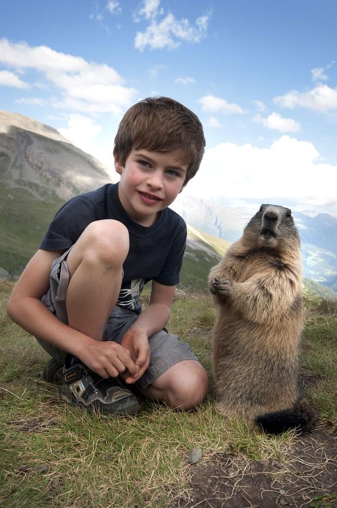 Austrian Boy and Marmots
