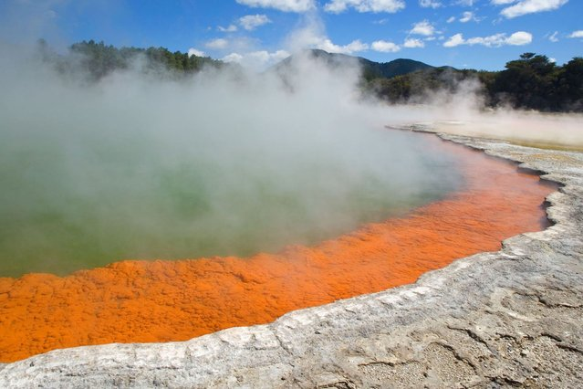 The Champagne Pool – A colorful hot spring in the Waiotapu Geothermal area of New Zealand. The surface temperature of the big spring is 74 degrees celsius and it bubbles are due to uprising carbon dioxide. Minerals contained in the hot water are gold, silver, mercury, sulphur and arsenic. (Photo by Alexandra Sailer/Ardea/Caters News)