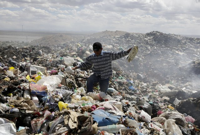 Bolivian student Esteban Quispe, 17, holds materials from a rubbish dump in Patacamaya, south of La Paz, December 10, 2015. (Photo by David Mercado/Reuters)