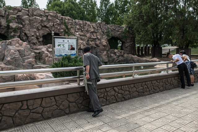 A man carrying a toy gun looks into the hippopotamus enclosure at Pyongyang Central Zoo on August 19, 2018 in Pyongyang, North Korea. (Photo by Carl Court/Getty Images)