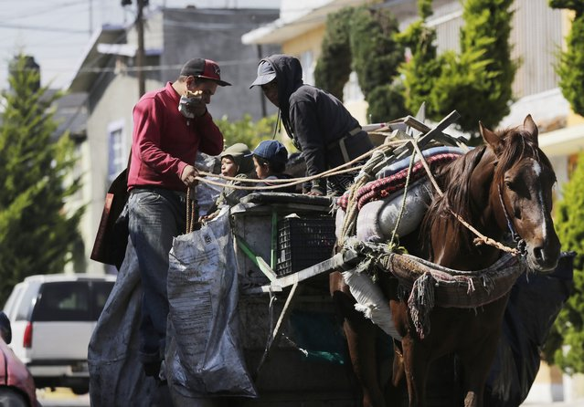 A garbage collector rides his horse-drawn rubbish cart, with his family, in Nezahualcoyotl, on the outskirts of Mexico City, February 18, 2015. (Photo by Henry Romero/Reuters)