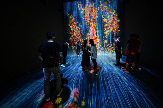 """Visitors stand inside an interactive digital installation, titled """"Transcending Boundaries"""" at the FUTURE WORLD exhibition at the ArtScience Museum, Marina Bay Sands on November 22, 2018 in Singapore. The exhibition features the high-tech interactive artworks created in collaboration with teamLab, an interdisciplinary art collective. (Photo by Suhaimi Abdullah/Getty Images)"""