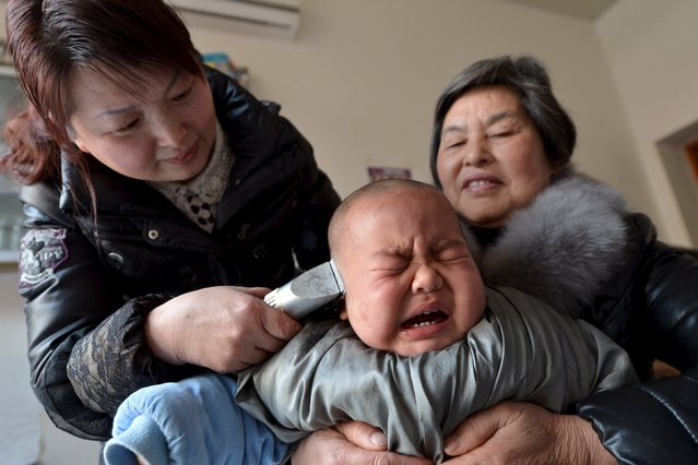 A child cries during a haircut in a barbershop during the Longtaitou (which means the dragon raises its head) Festival, on the second day of the second month of Chinese Lunar calendar, in Baokang County, Hubei Province, China, March 10, 2016. It is believed that having a haircut on this day is likely to bring good luck. (Photo by Reuters/China Daily)
