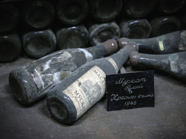 Vintage wine bottles dated from 1946 lay down in the wine cellar of the Massandra winery near Yalta. Yalta is a resort city on the north coast of the Black Sea in the Autonomous Republic of Crimea, a territory recognized by a majority of countries as part of Ukraine and incorporated by Russia as the Republic of Crimea. (Photo by Sergei Ilnitsky/EPA)