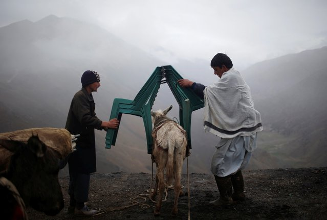 Afghan men load chairs on a donkey as they prepare to transport ballot boxes and other election material to polling stations which are not accessible by road in Shutul, Panjshir province, April 4, 2014. The Afghan presidential elections will be held on April 5. (Photo by Ahmad Masood/Reuters)