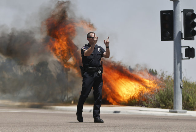 A Carlsbad,Calif. police officer turns traffic away as flames leap behind him Wednesday, May 14, 2014, in Carlsbad, Calif. Weather conditions that at least temporarily calmed allowed firefighters to gain ground early Wednesday on a pair of wildfires that forced thousands of residents to leave their homes. (Photo by AP Photo)