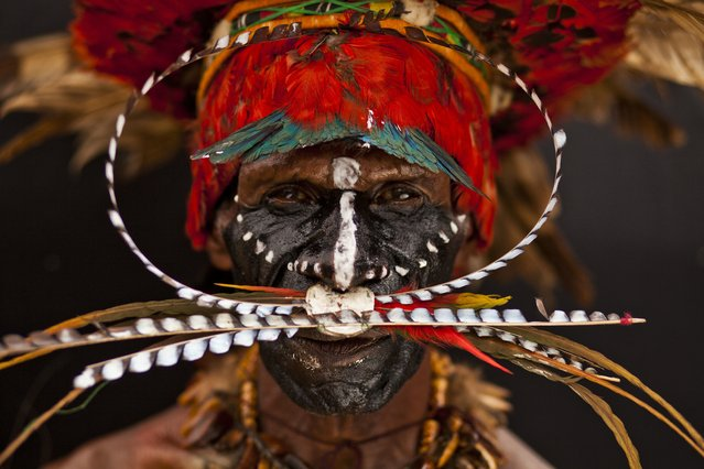 """Highlander Face"". Beautiful head dress and face paint of the Highlands of Papua New Guinea. Photo location: Papua New Guinea. (Photo and caption by Wylda Bayron/National Geographic Photo Contest)"