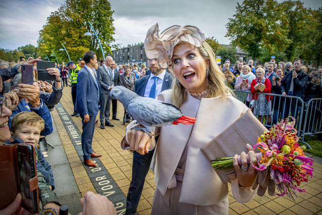 A parrot perches on the arm of the Netherland's Queen Maxima during their region visit to South-West Drenthe on September 18, 2019 in Drenthe, Netherlands. (Photo by Patrick van Katwijk/WireImage)