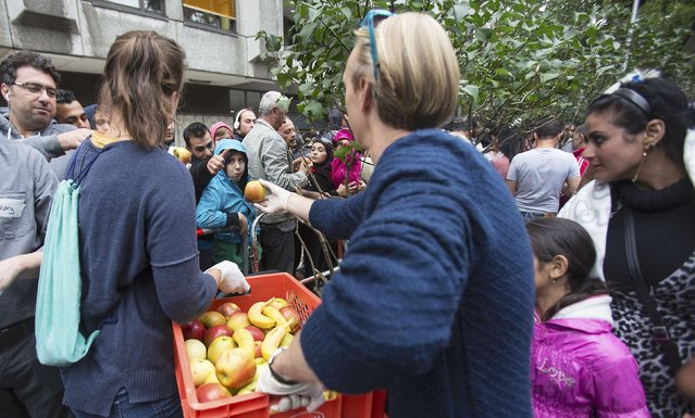Helpers distribute fruit to migrants wait in front of the State Office for Health and Social Affairs (LaGeSo), in Berlin, Germany, September 3, 2015. Net immigration into Germany last year hit its highest level since 1992 and the number of people claiming asylum benefits jumped by 61 percent, the Statistics Office said on Thursday, with expectations that figure will rise this year to 800,000. (Photo by Hannibal Hanschke/Reuters)