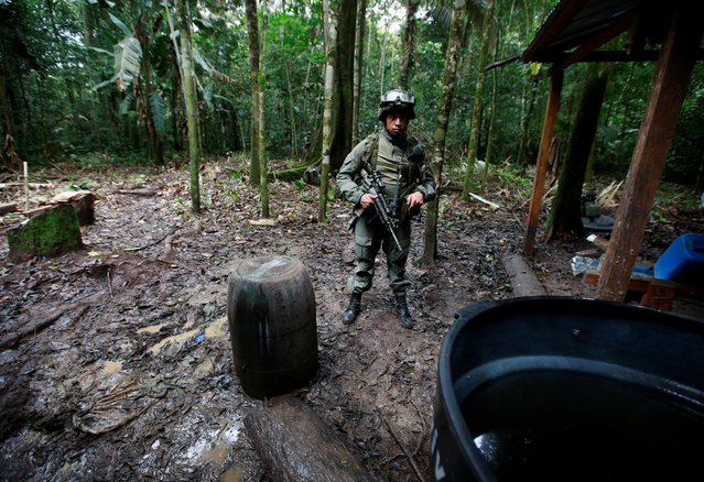 A Colombian anti-narcotics policeman guard a cocaine lab, which, according to the police, belongs to criminal gangs in rural area of Calamar in Guaviare state, Colombia, August 2, 2016. (Photo by John Vizcaino/Reuters)