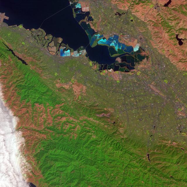 Salt ponds in San Francisco Bay