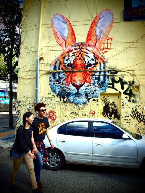 """Walk on the Wild Side"". Tiger Rabbit by Giai Streetart. Hongdae, Seoul, South Korea, September 2010. (Photo by Rob Allen)"