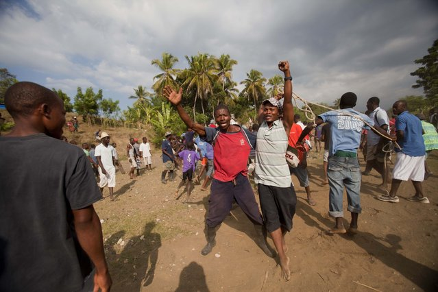 In this November 16, 2014 photo, men celebrate after their bull won a fight with another bull in Leogane, Haiti. A fight is over in minutes when a bull retreats in what bettors call a typical ending, although animals occasionally are gored. (Photo by Dieu Nalio Chery/AP Photo)