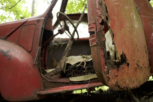 The decaying interior of Michael's fiat car that has been left to rot on purpose by former racing driver Michael Fröhlich in Neandertal Germany, September 11, 2016. (Photo by Christoph Hagen/Barcroft Images)