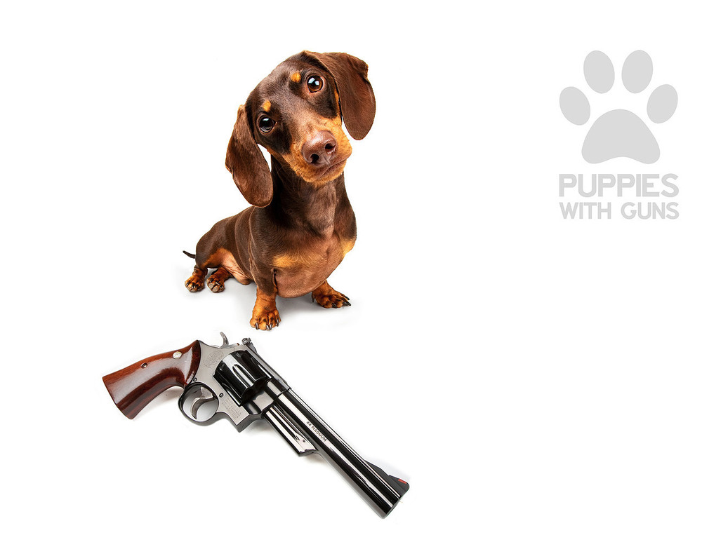 Puppies with Guns Calendar 2015