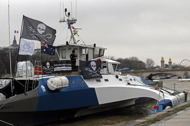 """The trimaran """"Brigitte Bardot"""" of the Sea Sheperd Conservation Society helmed by Captain Paul Watson from Canada is moored on the Seine river banks in Paris, France, Monday, January 19, 2015. The boat of one the world's most active marine non-profit organization, which participates against whale and seal hunting is in Paris until February 11 to promote their organization and will open the boat for public visits. (Photo by Francois Mori/AP Photo)"""
