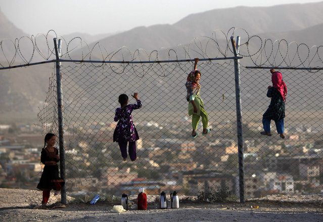 Afghan children climb onto a fence while playing as they sell tea in Kabul September 4, 2013. A tea vendor earns $1 on average a day. (Photo by Mohammad Ismail/Reuters)