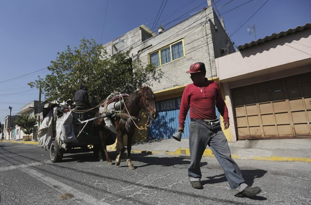 A garbage collector rings his bell, beside his horse-drawn rubbish cart, in Nezahualcoyotl, on the outskirts of Mexico City, February 18, 2015. (Photo by Henry Romero/Reuters)