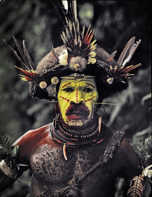 The tribes fight over land, pigs and women. Great effort is made to impress the enemy. The largest tribe, the Huli wigmen, paint their faces yellow, red and white and are famous for their tradition of making ornamented wigs from their own hair. An axe with a claw completes the intimidating effect. (Jimmy Nelson)