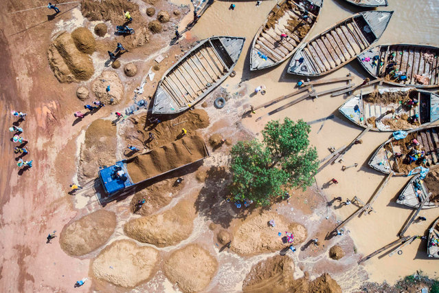 An aerial view shows Malian workers loading sand collected from the Niger river bed into a truck at the port of Bamako on October 7, 2018. Increasing construction in the Malian capital has boosted the demand for bricks made out of high-quality Niger River sand. Diggers can travel more than 100 kilometres (60 miles) from Bamako to reach an extraction site, sometimes exposed to harsh weather conditions that endanger their fragile convoys. Once there, sand collectors dive down to the river bed to fill up buckets. They then tip their contents into a boat that can reportedly carry up to 10 tonnes of sand at a value of 50,000 CFA (around $80). While men usually collect the sand from river beds far from the capital for a total of 9000 to 13000 CFA (around $16 to $23) for three days of work, women unload it in Bamako for a rate of 1,000 CFA (around $1.75) per shipment. (Photo by Michele Cattani/AFP Photo)