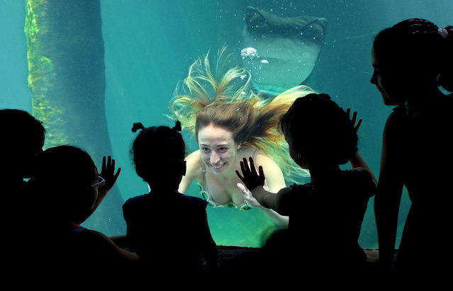 A model performs dressed as a mermaid at the Sao Paulo's aquarium in Sao Paulo, Brazil, Wednesday, January 8, 2014. The presentation runs daily as a special event to attract visitors during the January school vacations. (Photo by Andre Penner/AP Photo)