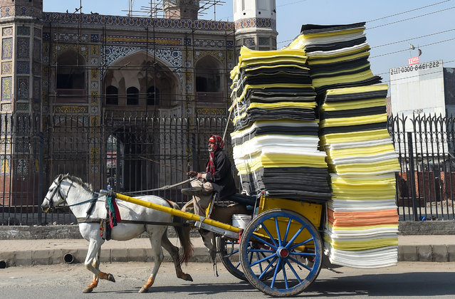 A Pakistani man drives a horse-drawn carriage loaded with foam sheets on a street in Lahore on January 29, 2019. (Photo by Arif Ali/AFP Photo)