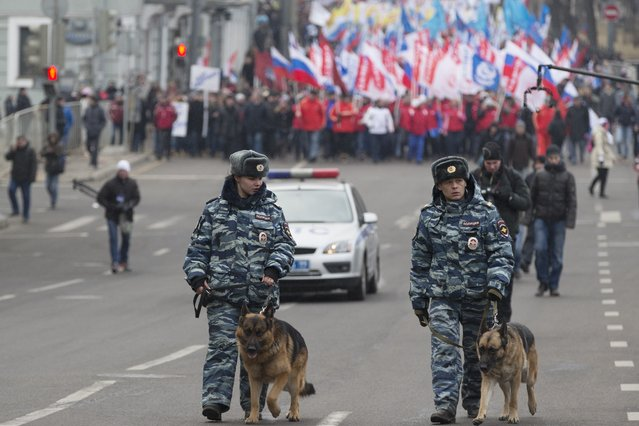 Police officers with dogs walk in front of more than ten thousand pro-Kremlin demonstrators many holding Russian flags march in central Moscow, Russia, Sunday, March 2, 2014 to express support for the latest developments in Russian-Ukrainian relations. (Photo by Pavel Golovkin/AP Photo)