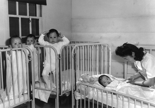 A nurse tends to four infants in cribs at the Manzanar War Relocation Center in California, in this 1943 handout photo. (Photo by Courtesy Ansel Adams/Library of Congress, Prints and Photographs Division/Reuters)