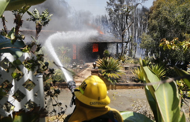 A firefighter pours water onto a fully engulfed home Wednesday, May 14, 2014, in Carlsbad, Calif. A brush fire Wednesday forced evacuation of thousands of people in the city of Carlsbad where at least two homes burned amid a Southern California heat wave that sparked several blazes. (Photo by AP Photo)