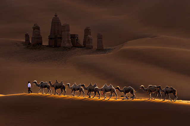 """Castle and Camels"". This is one shot which was captured in the morning in Kumtag Desert. Kumtag Desert is the 6th largest desert in China. It became National Park in 2002. Photo location: Shanshan, Xinjiang, China. (Photo and caption by Mei Xu/National Geographic Photo Contest)"