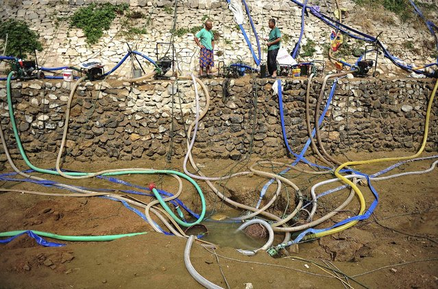Villagers use pumps to get water from a partially dried-up pond as drought hits Penglai, Shandong province, China, July 8, 2015. Severe drought hit part of Shandong province in eastern China due to lack of substantial rainfalls since this spring, local media reported. (Photo by Reuters/China Daily)