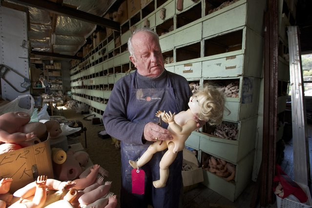 "Geoff Chapman, ""Head Surgeon"" at Sydney's Doll Hospital, is pictured in his workshop August 20, 2014. Opened in 1913, Sydney's Doll Hospital has worked on millions of dolls, teddy bears and other toys. Behind a toy shop on a busy suburban street in Sydney's south, ""doll surgeons"" transplant fingers, toes and heads, and repair broken eye sockets in dolls who were the victim of a childhood tantrum or sibling rivalry, sometimes decades ago. (Photo by Jason Reed/Reuters)"