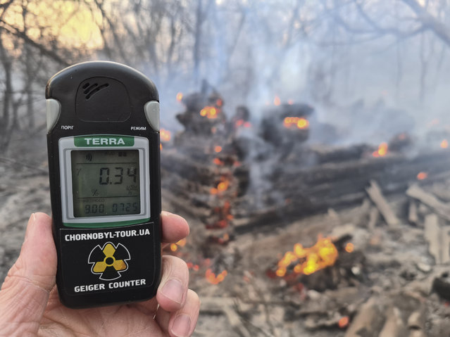 A Geiger counter shows increased radiation level against the background of the forest fire burning near the village of Volodymyrivka in the exclusion zone around the Chernobyl nuclear power plant, Ukraine, Sunday, April 5, 2020. (Photo by Yaroslav Yemelianenko/AP Photo)