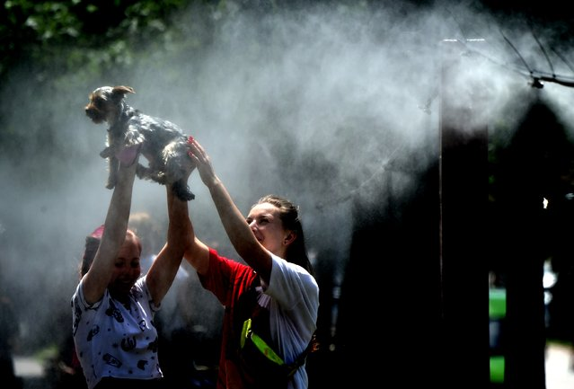 Girls refresh themselves and their dog with water spray frames set along the central street of the Ukrainian capital of Kiev during a heatwave on June 25, 2020. (Photo by Sergei Supinsky/AFP Photo)