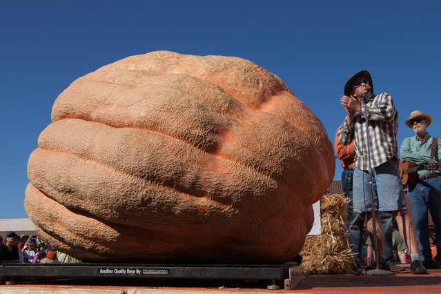 Grower Russ Pugh looks up to check the weight of his 1,828 lb. pumpkin at the 41st Annual Safeway World Championship Pumpkin Weigh-Off  in Half Moon Bay, Calif., Monday, October 13, 2014. Pugh would have taken 2nd place this year if his pumpkin hadn't been disqualified for rot. (Photo by Alex Washburn/AP Photo)