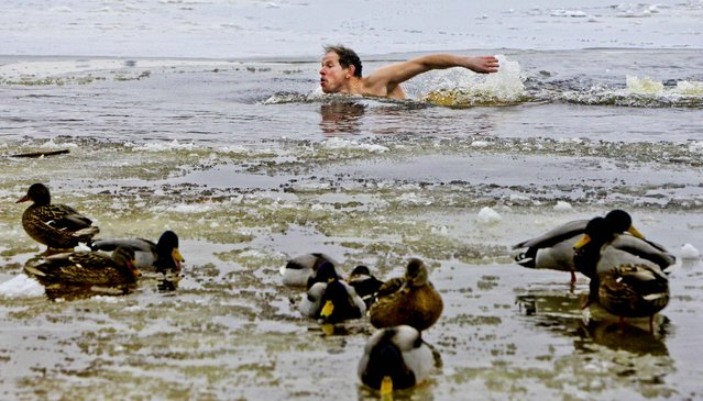 A man swims through icy waters of the Dnipro river in Kiev, Ukraine, January 23, 2013. (Photo by Sergei Chuzavkov/Associated Press)