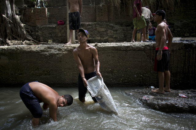 In this November 30, 2017 photo, Douglas, center, holds a sack in the polluted Guaire River as he and others pull mud up from the bed of the river in search of gold and other valuables to sell, in Caracas, Venezuela. The river and the scavengers in it go largely unseen by Caracas residents speeding overhead on the city's main highway, blocked from view by concrete barriers. (Photo by Ariana Cubillos/AP Photo)