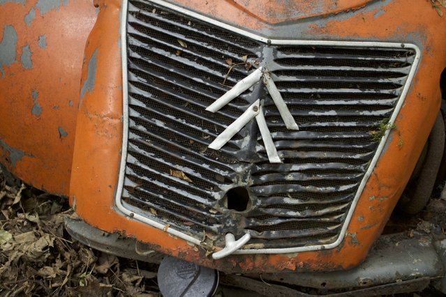 A shot from the front of Michael's citroen car that has rotted away in his forest for years in Neandertal Germany, September 11, 2016. (Photo by Christoph Hagen/Barcroft Images)