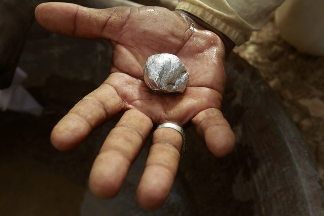 A gold mine worker displays gold in a local mine in Al-Ibedia locality at River Nile State, July 30, 2013. (Photo by Mohamed Nureldin Abdallah/Reuters)